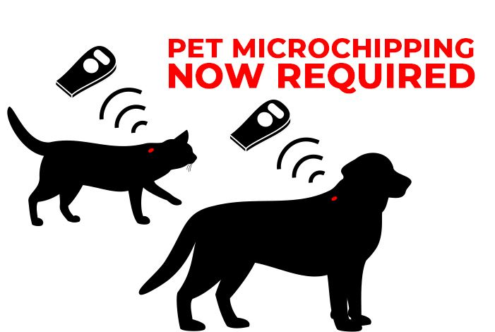 Pet Microchipping Ordinance