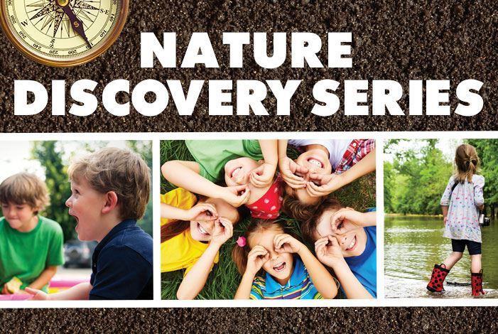 Nature-Discovery-City-News-Graphic